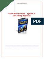 fbfsystem1