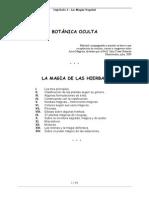 Magia de Las Hierbas
