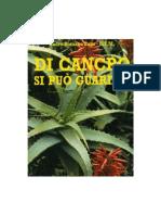 PADRE ROMANO ZAGO-DI CANCRO SI PUO GUARIRE