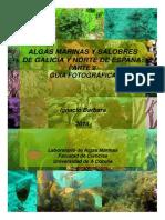 ALGAS-GALICIA-GUÍA-FOTOFRÁFICA-2013