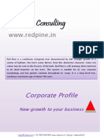 RedPine Corporate Profile