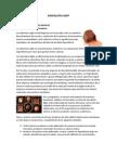 Plan de Negocios Chocolate Light Completo