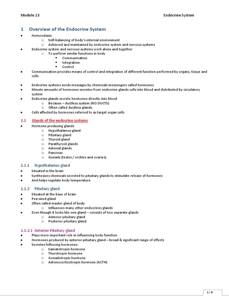 2013 Baa Endocrine System Endocrine System Adrenal Gland