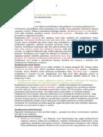 2 seminaras. Baudžiamosios teisės samprata, sistema ir uždaviniai..docx