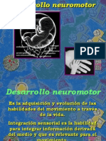Neuro Des Arrollo
