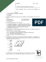 005 Practica Dinamica Circular