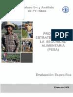 Evaluacion_PESA