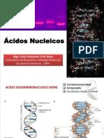Clase 7 - ADN Y ARN