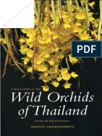Wild Orchids of Thailand