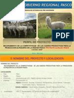 Propuesta Juan Alpacas