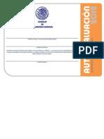 Autoevaluacion2012_Hemodialisis