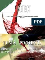 Prezentare Vin Rosu Pinot Noir