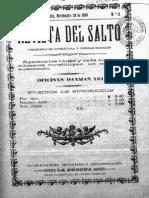 Revista Del Salto 11 (20 Nov 1899)