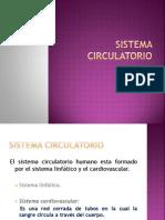 sistemacirculatorio-100609164302-phpapp01
