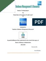 American Express Summer internship report.docx