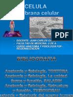 AnatoCélulaGralDlloVital3