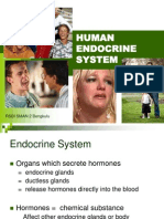 6 Endocrine System