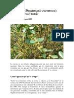 Envira (Daphnopsis racemosa)
