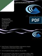 adanipresentation-130311135708-phpapp01