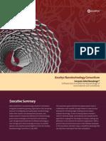 Accelrys Nanotechnology Brochure
