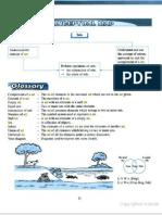 Set Conceptual Map