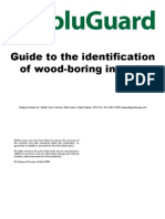 Woodworm Guide