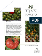 Year of Tomato Flyer