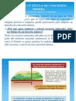 DENUNCIO MINERO (LUYO)