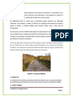 Pavimentos_trabajofotocopia
