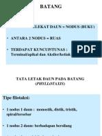 Morfologi Batang