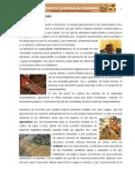 EMPRENDEDORES_PROYECTOS_DREP[1]