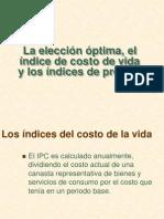 Eleccion Optima Costo de Vida e Indices de Precios