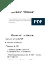 12 Evol ADNmini