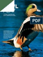 Waterfowls [PP2008.05]