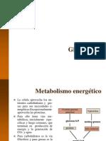 3 Glicolisis