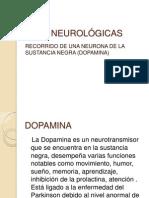 BASES NEUROLÓGICAS