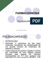 2 - POLISSACARÍDEOS