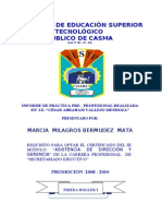 52176508 Informe Practica Preprofesional