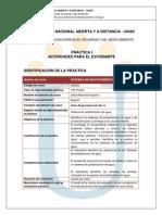 Protocolo de Practicas II Sem 2013 Estudiantes