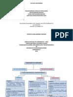 Actuar Con Firmeza - Mapa Conceptual