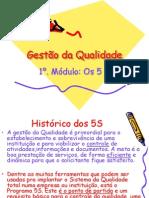 Gestão_da_Qualidade_-_5S