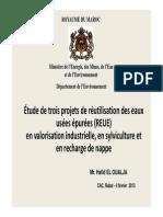 2013 02 04 Etude de Trois Projets de Reutilisation Des Eaux Usees Epurees Oualja