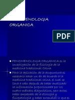 2. FENOMENOLOGIA ORGANICA.ppt