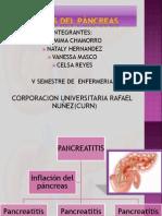 Enfermedades Del Pacreas