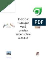 E-Book Agel Enterprise
