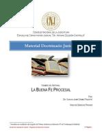 AvanceDoctrinario5-LaBuenaFeProcesal