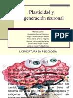 FILOGÉNESIS DEL SISTEMA NERVIOSO (1).ppt