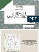 HEMATO ANEMIA MACROCÍTICA