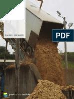Bioenergy – Rachel Smolker