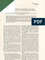 Caminero Et Al_sexual Dimorphism in Accessory Olfactory Bulb Mitral Cells_a Quantitative Golgy Study